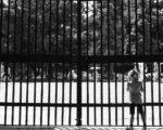 Covid-19 - Il Governo Annuncia Ulteriori Misure Restrittive