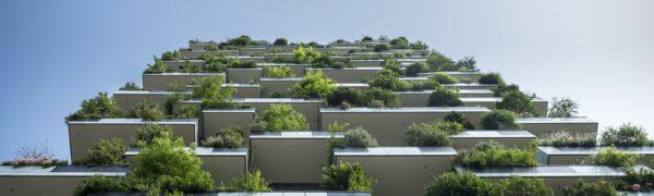 Il Decoro Architettonico Nel Condominio – Avv. Daniele De Bonis